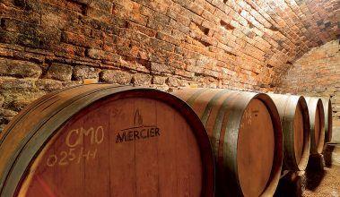 Návšteva vo vínnej pivnici