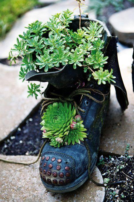 Skrytý potenciál. Staré topánky, čo by inak skončili v odpade, poskytnú domov rôznorodej výsadbe. Pri výbere obuvi však buďte trochu kritickejší – voľte modely, ktoré sú z pevnejšieho materiálu a stále držia tvar. Použiť možno šnurovacie topánky, čižmy, ale napríklad aj nepoužívané gumáky.