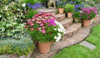 Svah v záhrade – čo s ním?