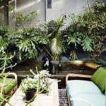Dvor pri kuchyni spríjemnený bujnou zeleňou poskytuje priestor na stolovanie i relax a patrí medzi najobľúbenejšie miesta domu. Ak sa tu zíde viacero ľudí, môžu si posadať na hnedú betónovú lavicu, ktorá inak slúži ako polica na kvety.