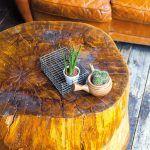 Tón v tóne. Naozaj štýlovým konferenčným či príručným stolíkom sa môže stať aj peň stromu. Ak ho doplníte sedením z hnedej kože, efektná kombinácia je na svete.