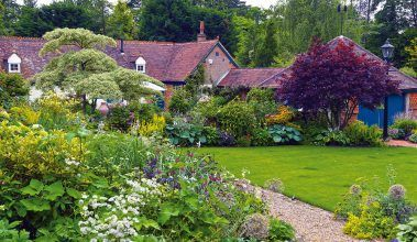 Anglická záhrada, ktorá využila svoj potenciál