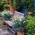 Vďaka nevyhnutným úpravám v záhrade naplno vynikne použitá tehla a kameň. Sedenie pri dome dopĺňajú rastliny v kvetináčoch, ktoré harmonizujú s druhmi v zmiešaných kvetinových záhonoch.