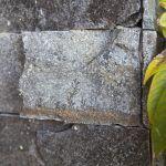 Domáci sa každý deň tešia z domu, zo záhrady aj z drobností, ktoré prináša okolitá príroda – z blízkosti operencov či odtlačkov pravekých prasličiek zakliatych v kamennom obklade.