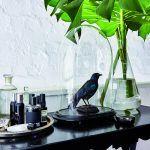Preparované vtáky ako papagáje, vrany či havrany sú Rupertovou vášňou a sú veľmi pôsobivé, rovnako ako lebky zvierat.