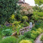 Stromové papradie v zadnej časti záhrady predstavuje zelené pozadie rybníka a súčasne sa v ňom ukrýva aj veľké čerpadlo a filtračný systém.