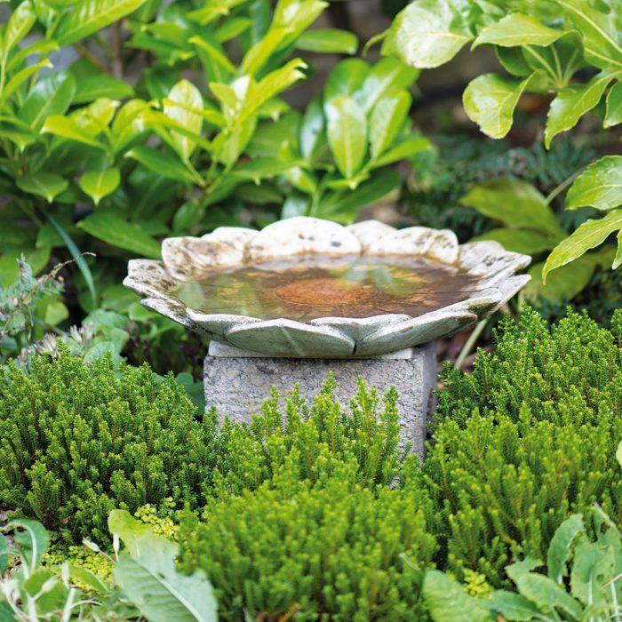 V kútiku s vtáčím kúpeľom od keramičky Sarah Waltonovej sa pôvodne nachádzala mimóza, ktorú v roku 2011 vyvrátil vietor. S redizajnom danej časti potom pomohla miesta záhradná spoločnosť.