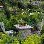 Záhradu si manželia vytvorili tak, aby v nej mali čo obdivovať počas celého roka. Ak to počasie dovolí, zvyknú jedávať i variť vonku.