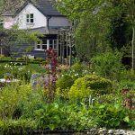Výsadba pri okrajoch rybníka je po problémoch s prepichnutím jeho okraja len naozaj jednoduchá. Papradiam a funkiám sa tu výborne darí.