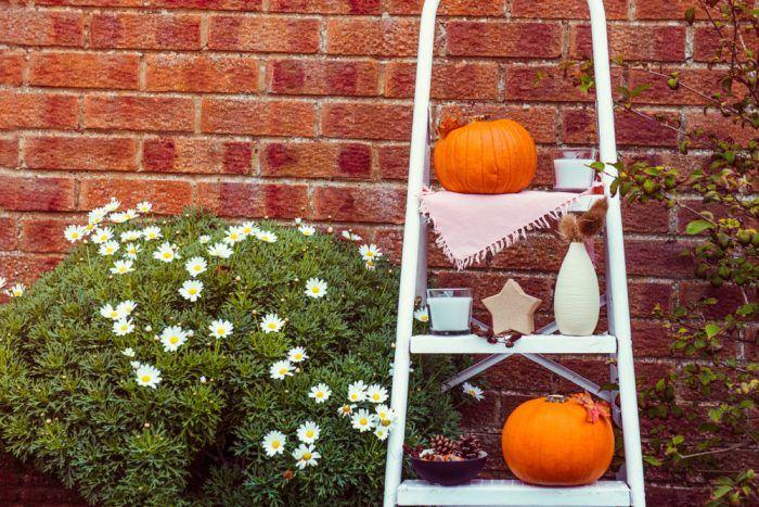 Jednoduché a efektné, využiteľné v predzáhradke, na terase aj doma.