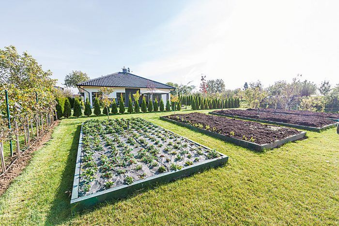 Z úžitkovej časti sú ku kuchyni najbližšie vyvýšené záhony s drobným ovocím a zeleninou.