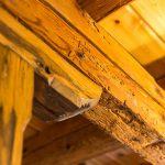 drevený trámový strop