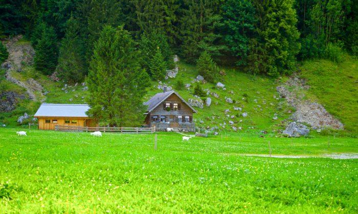 Chata v severovýchodnom Švajčiarsku a neodmysliteľné pastviny všade naokolo.