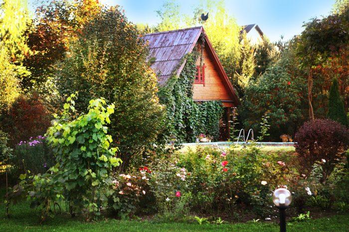 Táto chata obrastená až po strechu stojí v Rusku, podobné ale nájdete v celej Európe.