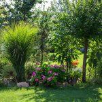 záhrada so zeleňou