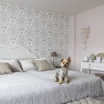 posteľ a pes