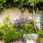 mestská átriová záhrada