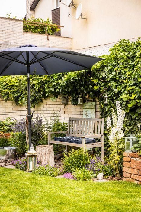 slnečník a lavica v záhrade